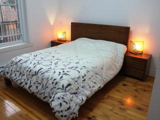 BEAUTIFUL 7½ 8 BEDS CLOSE PARCS AND METROS ! - Montreal vacation rentals