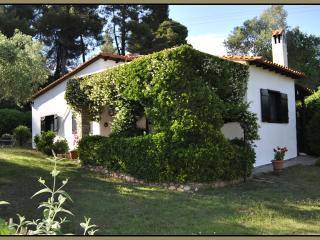 "Vacation house rental ""Villa Pigadi"" - Nikiti vacation rentals"
