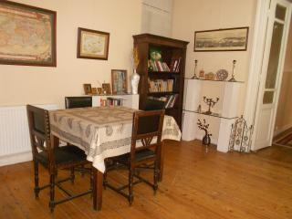 Renting my rooms.High ceiling 1985 old - heart of - Istanbul vacation rentals