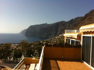 APARTMENT WITH AN AMAZING VIEWS TO THE CLIFFS - Acantilado de los Gigantes vacation rentals