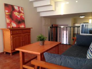 1 bedroom Apartment with Freezer in Acantilado de los Gigantes - Acantilado de los Gigantes vacation rentals