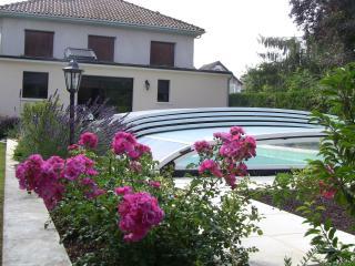 Nice 5 bedroom House in Montignac - Montignac vacation rentals