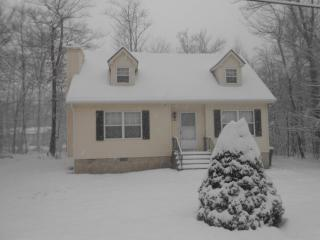 Beautiful 3 Brms With Fireplace Walk To Amenities - Tobyhanna vacation rentals