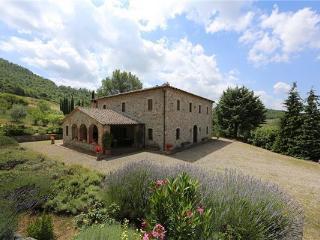 Villa in Trevinano, Tuscany, Italy - Trevinano vacation rentals