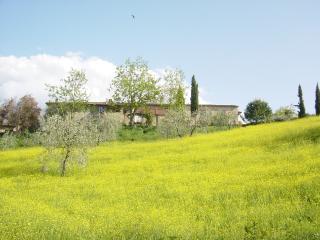 Azienda Pietralta - App. Deutzia 2 persone - Gambassi Terme vacation rentals