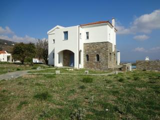 Unforgetable Holidays with Luxury taste. - Andros Town vacation rentals