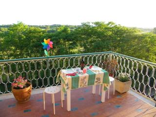 Rome in Green Apartment, FREE CAR PARKING - Rome vacation rentals