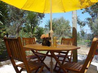 Casa Periquita on vineyard with pool, near beaches - Caldas da Rainha vacation rentals