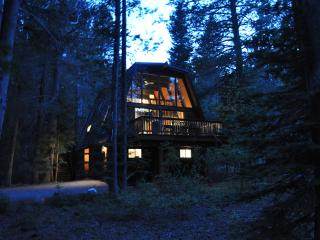 Remodeled Cabin: Family-Friendly, Adventurous Yard - Lake Tahoe vacation rentals