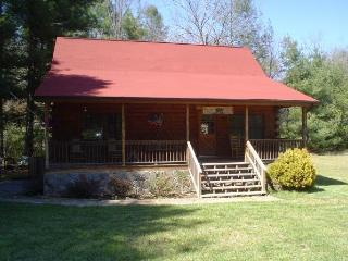 Gorgeous Secluded Mountain Cabin on Snowbird Creek - Robbinsville vacation rentals
