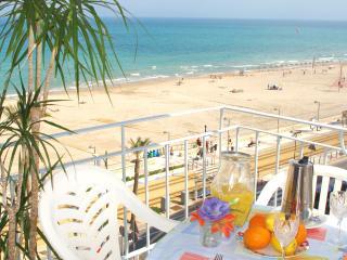 Fabulous Beachfront apt in Alicante city San Juan - Alicante vacation rentals