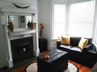 CHARMING EDWARDIAN FLAT, CLOSE TO EVERYTHING IN SF - San Francisco vacation rentals