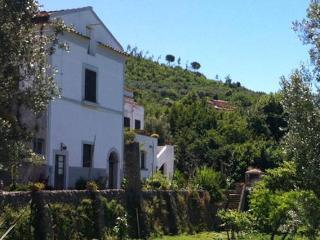 FARMHOUSE OF 1800th (close to Amalfitan coast) - Cava De' Tirreni vacation rentals