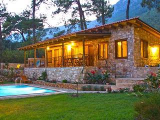 Stone villa in Akyaka build in Nature with pool - Gokova vacation rentals