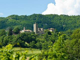 Marcheholiday Relais Castello Pieve - Mercatello sul Metauro vacation rentals