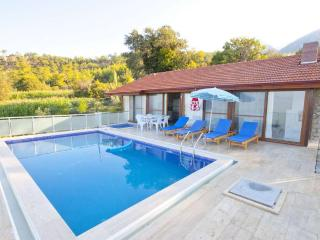 New build villa with big pool in Yakakoy - Fethiye vacation rentals