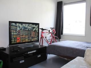 Perfect budget studio near centre! - Holland (Netherlands) vacation rentals