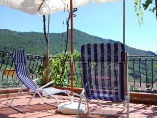 Villa Val Graziosa - Calci vacation rentals