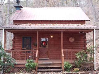 Cozy Cabin with Internet Access and A/C - Sevierville vacation rentals