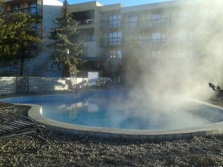 All seasons SPA near Sofia and Borovets. Wi-fi! - Dolna Banya vacation rentals