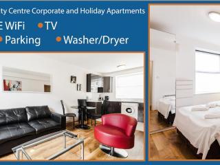 Parnell Street 1 x Bedroom Apartment - Dublin vacation rentals