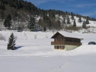 La Bresse Hautes Vosges Chalet