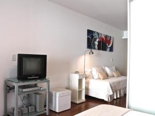 Studio barrio norte 2 pax - Buenos Aires vacation rentals