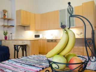 3-Bedroom City Center Apartment 135m2 Prague 1 - Prague vacation rentals