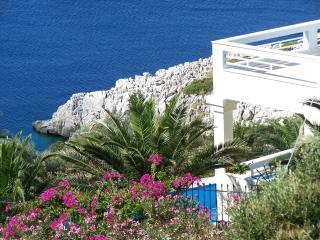 Ashley Villa Directly on the Sea Private Pool - Marathon vacation rentals