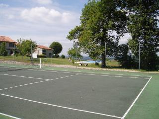 House in Lusignac, Dordogne. Pool & tennis - Bouteilles-Saint-Sebastien vacation rentals