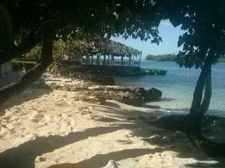 Starfish Paradise, beach front, ocean view, wifi - Negril vacation rentals