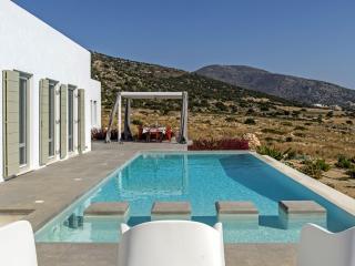 Luxury & modern Villa Alkmini with private pool - Drios vacation rentals