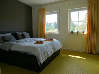 Cozy 2 bedroom B&B in Balkbrug - Balkbrug vacation rentals