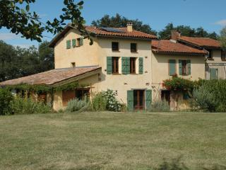 Nice Gite with Internet Access and Swing Set - Gaillac-Toulza vacation rentals