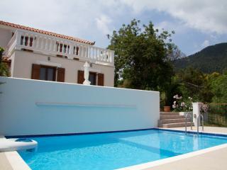 Skopelos Country Villa - Delfi - Skopelos vacation rentals