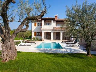 3 bedroom Villa with Deck in Tar-Vabriga - Tar-Vabriga vacation rentals