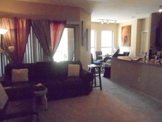 New Luxury APT. W/ all The Comforts/conveniences O - Las Vegas vacation rentals