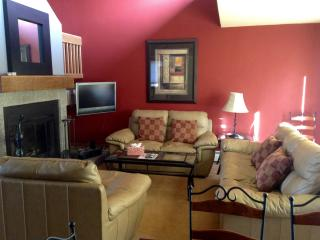 Low Rates-Lovely 3bd home-private hot tub - Vail vacation rentals