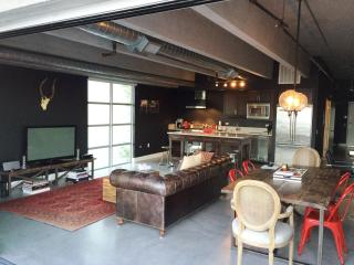 Marina Del Rey Loft Living - 1044 - Hermosa Beach vacation rentals