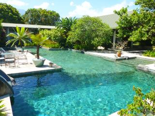 Spacious 4 bedroom villa with large swimming pool  and private bungalow - Papeete vacation rentals