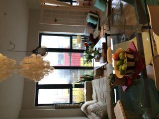 3BR in trendy Williamsburg/Brooklyn - Brooklyn vacation rentals