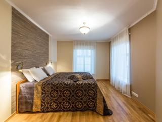 DeLuxe 2 BDR Apartment – Rataskaevu Street - Tallinn vacation rentals