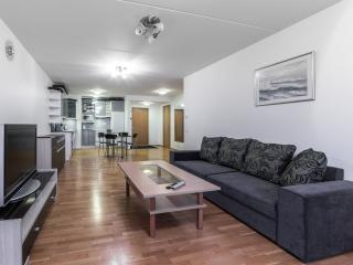 Standard 1 BDR Apartment – Roosikrantsi Street - Tallinn vacation rentals