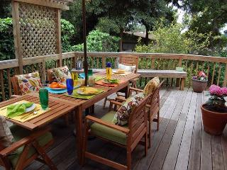 3305 Peace of Mind ~ Save 20% in March & 10% in April! Walk to Town! - Carmel vacation rentals