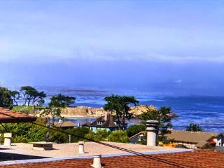 3372 Ocean View Sanctuary ~ Panoramic Ocean Views, Plush Beds, Luxury Linens - Pacific Grove vacation rentals