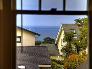 3344 The Gingerbread House Guest ~ Spring Specials ~ Plush Beds, Full Kitchen - Pacific Grove vacation rentals