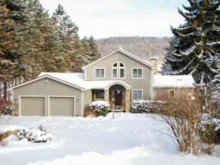 Perfect House with A/C and Hot Tub - McHenry vacation rentals
