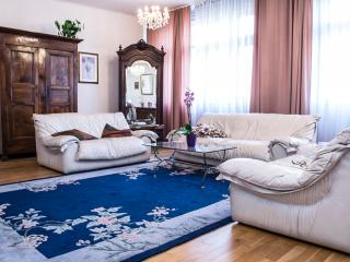 Wonderful 2 bedroom Condo in Prague - Prague vacation rentals