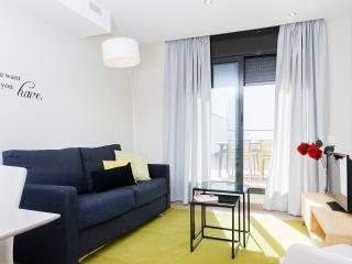 Plaza - one bedroom with terrace apartment - Barcelona vacation rentals