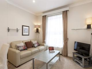 Elegant Bayswater tube 30 seconds! Free Fast Wi-Fi - London vacation rentals
